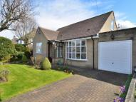 Detached Bungalow for sale in Highgate Grove...