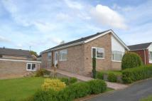 3 bedroom Detached Bungalow in Ashtree Avenue...
