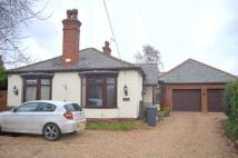 Detached Bungalow for sale in Moor Lane, North Hykeham...