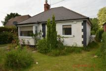 Thorpe Lane Bungalow to rent