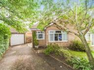 Semi-Detached Bungalow in Ramsay Drive, Ferryhill...