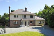 Detached house for sale in Blackwell, Bromsgrove...
