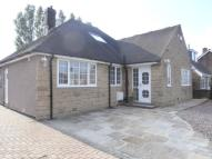 Bungalow for sale in Hague Lane, High Green...