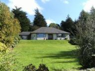 Detached Bungalow in Norland Cefn Bychan Road...