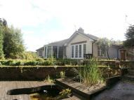 2 bedroom Detached Bungalow for sale in Alyn Bank Cottage...