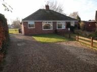 2 bed Semi-Detached Bungalow in Windmill Way, Haxby...
