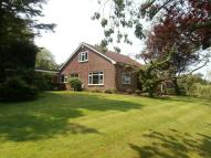 4 bed Detached Bungalow for sale in Gate Acre Brook Lane...