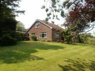 Detached Bungalow for sale in Gate Acre Brook Lane...