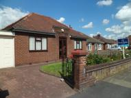 Detached Bungalow in Haughton Green Road...