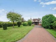 Detached Bungalow for sale in Rylands London Road...