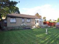 Detached Bungalow in Hillward Clough Dene...