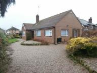 Detached Bungalow in Tanglewood Hadlow Road...