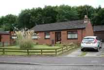 Detached Bungalow for sale in Bracadale Road...