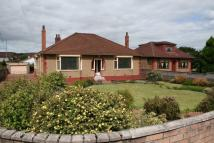 Detached Bungalow for sale in Coatbridge Road...