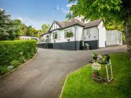 Detached Bungalow for sale in Terfyn Lodge Gronant...