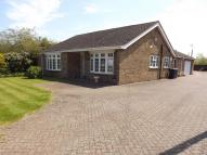 Detached Bungalow for sale in New Road, Chatteris
