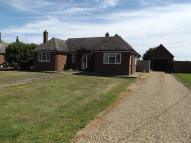 Detached Bungalow to rent in Wisbech Road, March
