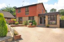 4 bedroom Detached house in Sunninghill, Berkshire