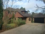 Detached home in Ascot Berkshire