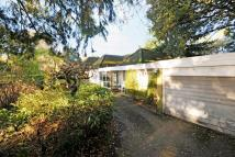 Detached Bungalow for sale in Chavey Down, Bracknell...