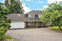 Detached property in Sunninghill, Berkshire