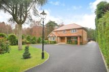 6 bed Detached house in Ascot, Berkshire
