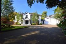 4 bed Detached house in Maryton Grange...