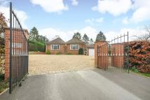 Detached Bungalow for sale in Kennington, Oxford