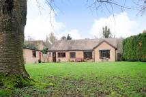 4 bedroom Detached Bungalow in Appleton, Oxfordshire