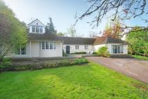 Detached Bungalow in Cumnor, Oxfordshire
