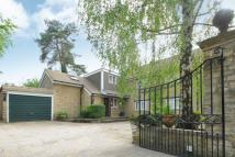 Detached property for sale in West Oxford, Oxfordshire