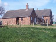 House Share in Picton Road, Penyffordd...