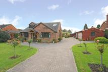 Detached Bungalow for sale in Whelpley Hill...