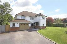 Detached home for sale in Crampshaw Lane, Ashtead...