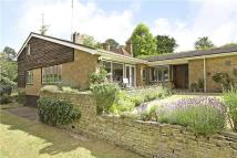 4 bedroom Detached home in Walpole Avenue...