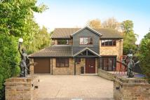 4 bedroom Detached home for sale in Hengest Gate, Harwell...
