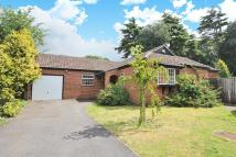 3 bed Detached Bungalow for sale in Headington, Oxford