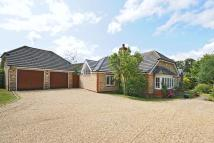 4 bedroom Detached Bungalow in Rotherfield Peppard...