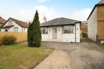 3 bed Detached Bungalow for sale in High Wycombe...