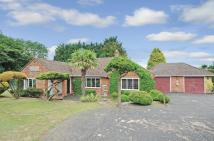 Detached Bungalow for sale in Radnage, Buckinghamshire