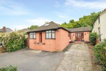 4 bedroom Detached Bungalow in High Wycombe...