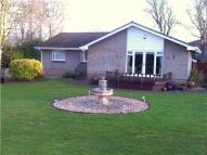 4 bed Detached Bungalow for sale in 3 Glamis Gardens <br>...