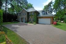 5 bed Detached house in Lightwater, Surrey