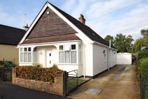 3 bed Detached Bungalow in Bagshot, Surrey