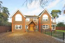 4 bedroom Detached house for sale in Lightwater, Surrey