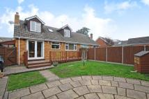 4 bed Semi-Detached Bungalow in Lightwater, Surrey