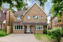 Detached property in Bagshot, Surrey