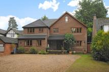 6 bedroom Detached property for sale in Curley Hill Road...