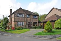 4 bedroom Detached property for sale in Lightwater, Surrey