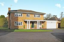 Detached house in Lightwater, Surrey